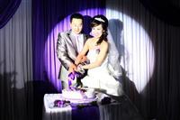 紫色浪漫之约