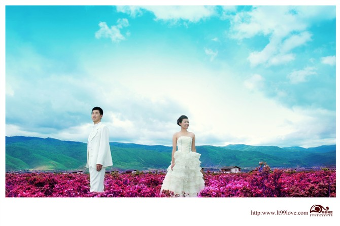 香格里拉婚纱摄影