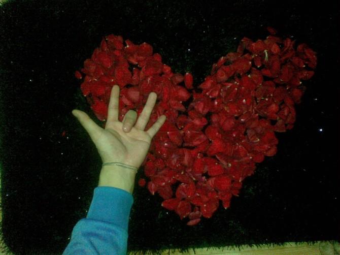 可爱的一朵玫瑰花_简谱