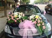 聊城欢天喜地婚礼策划婚车