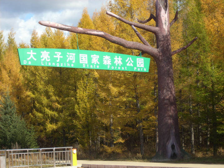 本地通首页 旅游景点  亮子河森林公园 相关机构:原始森林 关 键 词
