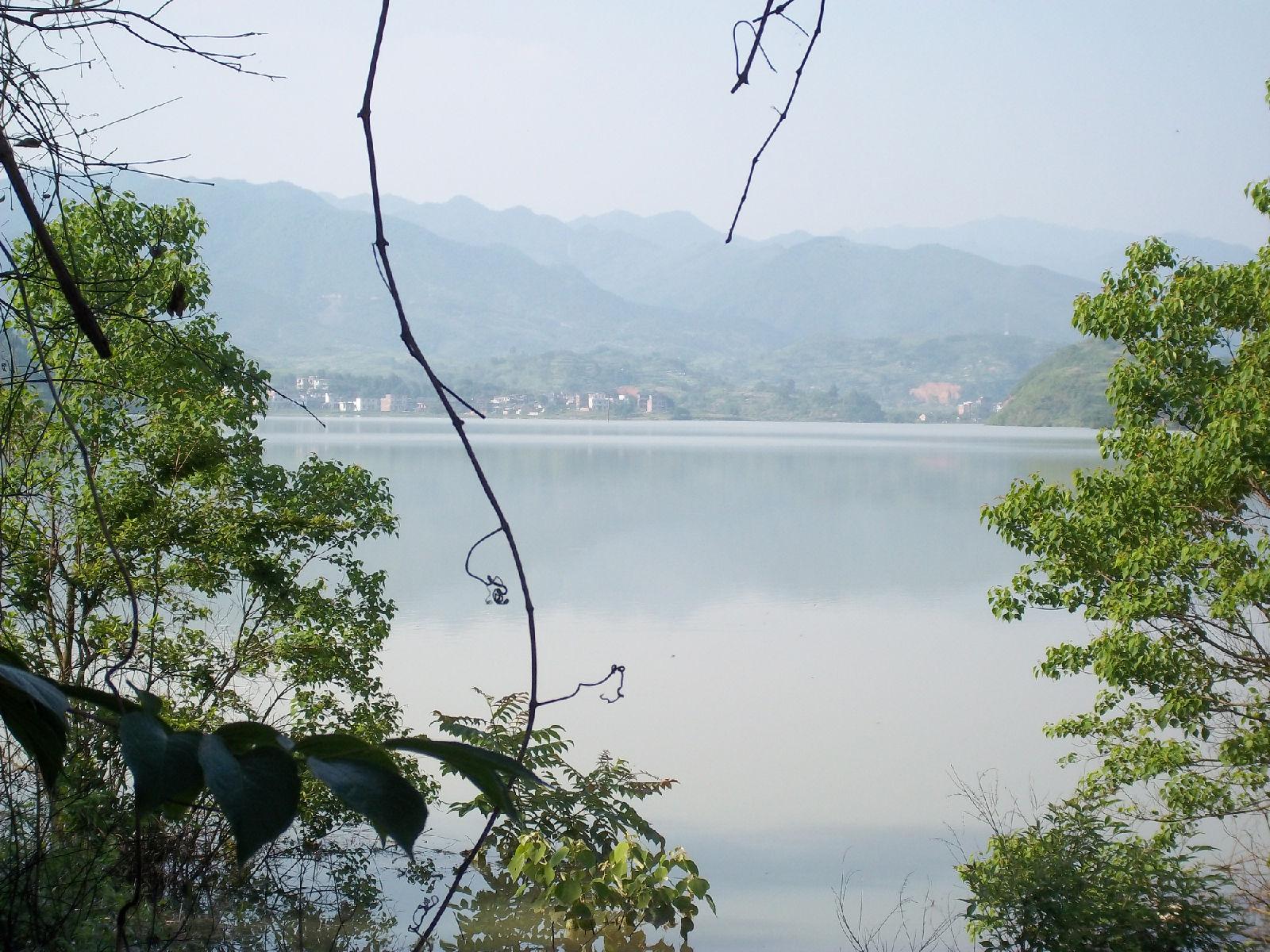 新田县金陵湖度假村