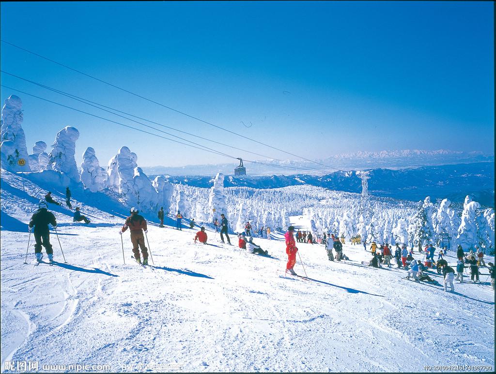 组团滑雪去的报名