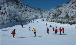 第十三届澳门威尼斯人网站冰雪节