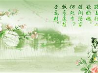 山阳之窗2012网上清明节  绿色清明从我做起