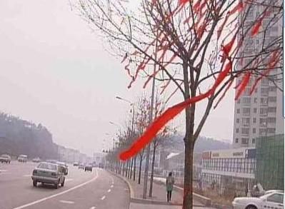 红飘带在飞扬  澳门网上投注官网人在行动