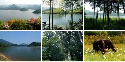 周坞山风景区_旅游景点_长兴在线