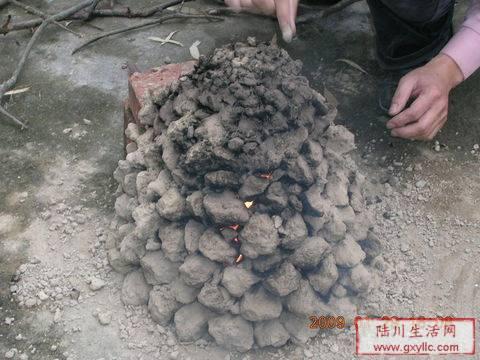 用生红薯做动物造型