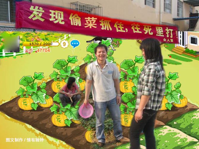 [原创]偷菜的来看看吧,QQ农场最新搞笑图片
