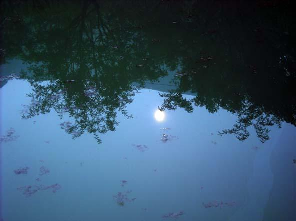 [原创]水中有个月亮