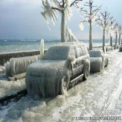 内蒙古雪灾,百年不遇的大雪灾