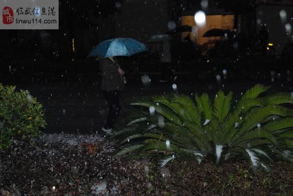 澳门网上投注官网2010的第一场雪,似乎来得太早了一些!