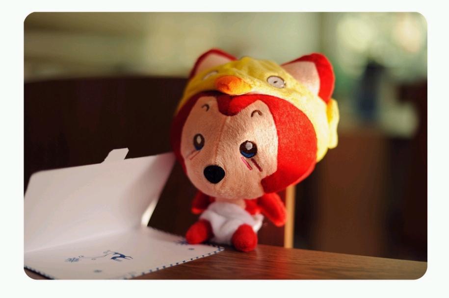 可爱的小狐狸_贴图乐园