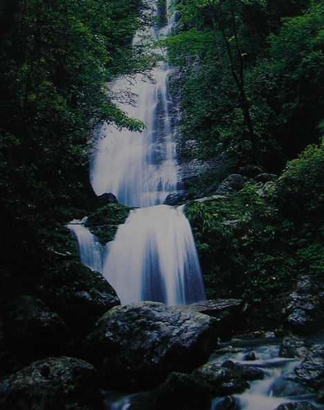 龙颈瀑布风景区位于陆川县温泉镇四良村,距县城约4公里,山地面积4000&