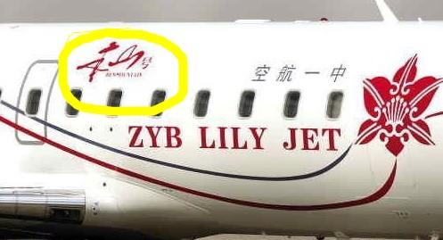 赵本山私人飞机亮相沈阳机场