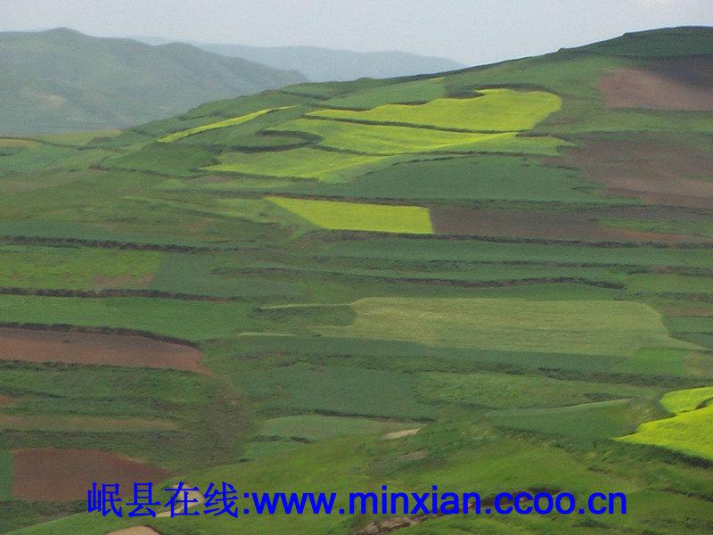 东山区风景论坛图片_岷县论坛