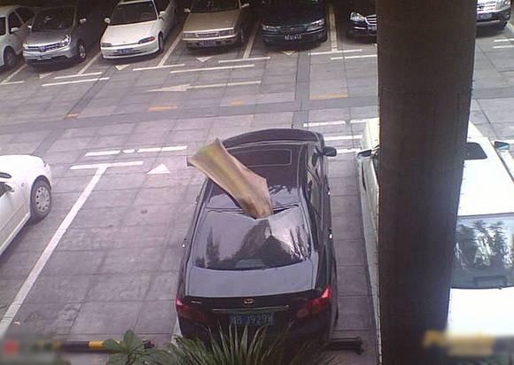 澳门网上投注网址大学内树叶竟砸毁一辆轿车!有图有真相!