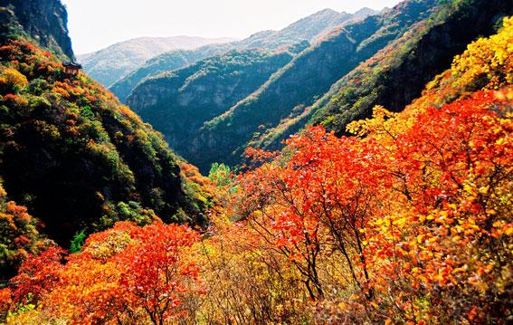 【门头沟旅游景点】双龙峡自然风景区