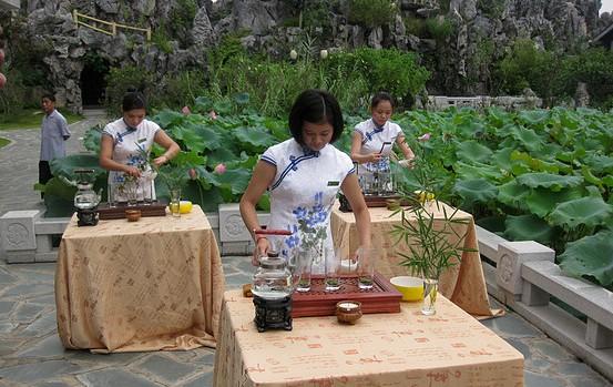 惠州西湖荷花节茶艺表演在丰渚园举行