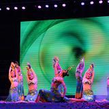 龙湾国际面市盛典在酉阳体育馆隆重举行(图)