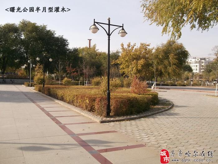 齐齐哈尔的绿色王国——曙光公园