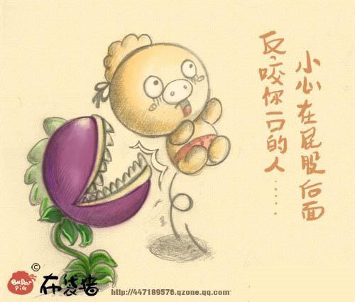 植物大战僵尸里的人生哲理(卖萌图)