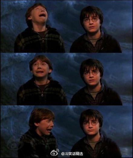 哈利从小就很淡定~哈哈.