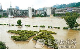 青海采取多项措施应对农作物自然灾害