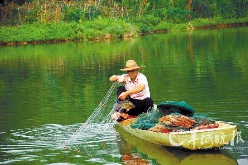 机养殖鱼离开广州,拥有西湖美景的惠州也是寻找省内农家乐的必去之地