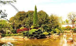 [原创]神奇美丽的景园