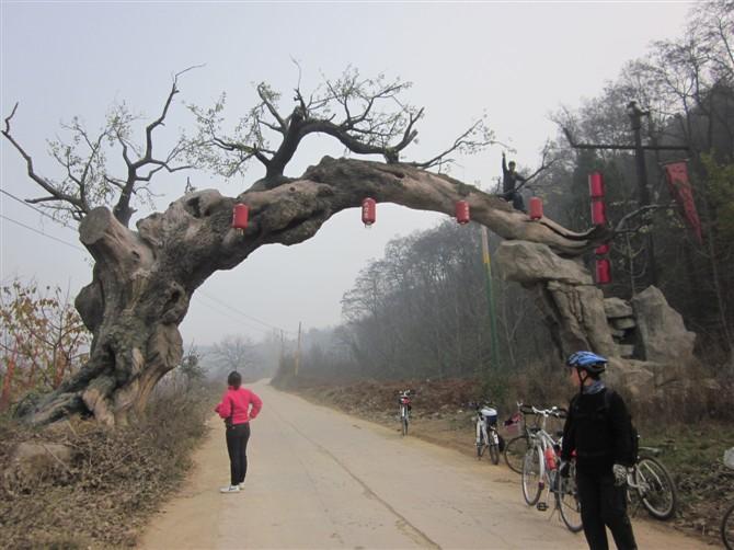[原创]骑行穿越灞桥洪庆山国家森林公园-黄巢堡