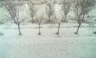 澳门银河网址下雪了