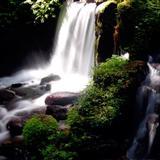 天籁之音―聆听大自然的声音