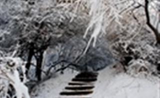[转贴]2011年1月17日实拍云南澳门网络下注赌场雪景