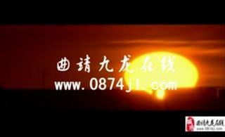 九龙在线菜花节期间特价优惠活动宣传片