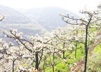 看中国天气网是怎么介绍美高梅注册县城的