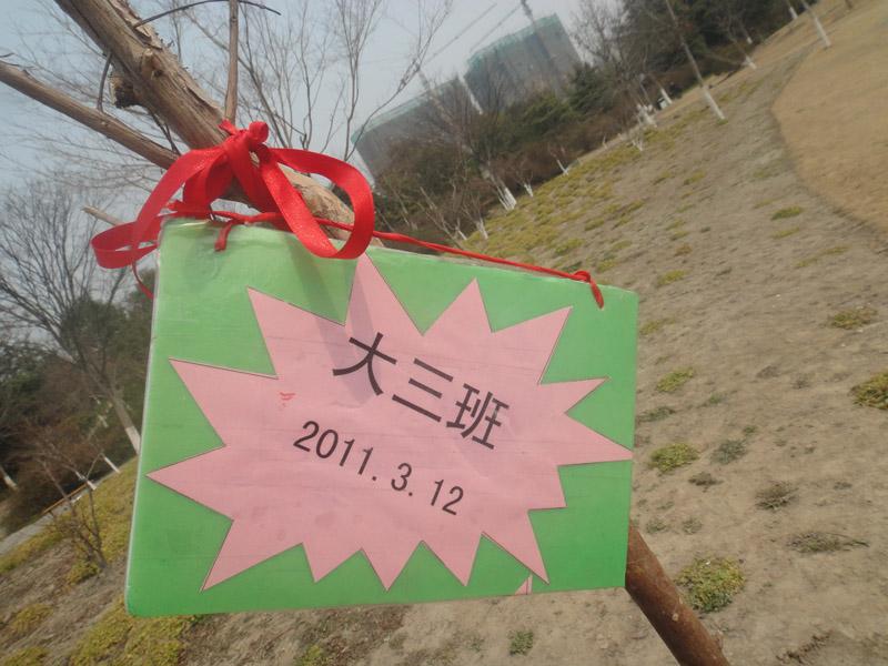 幼儿园植树节活动