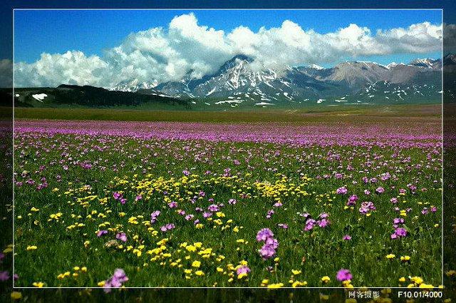 中国各地风景图片
