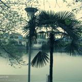 路�^�Z湖