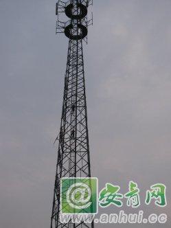 临泉这两小学生真牛,敢攀爬信号塔.