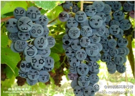 """一串串""""表情""""丰富的葡萄,太有才了!"""