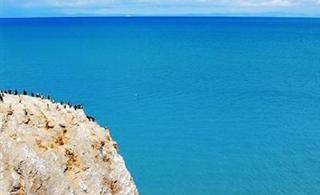 青海湖旅游迎来年度大高峰旅游日收入突破百万元