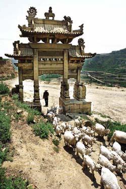 冯小刚最新大作电影《温故1942》今年十月份将在山西省汾西县师家沟清代民居开拍
