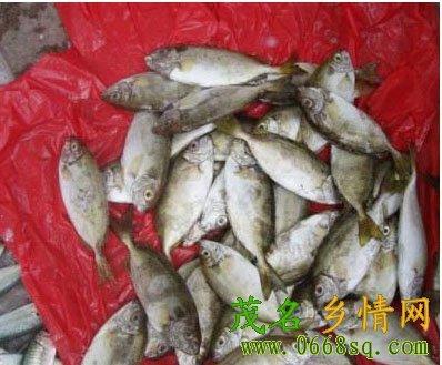 [分享]水东名食