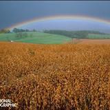世界各地的彩虹