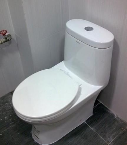 将坐便器的出水管口对准下水管口,放平找正,在坐便器的螺栓孔眼处画好