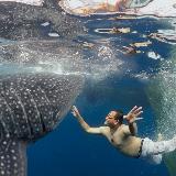 动物世界的感动!国家地理绝美大片