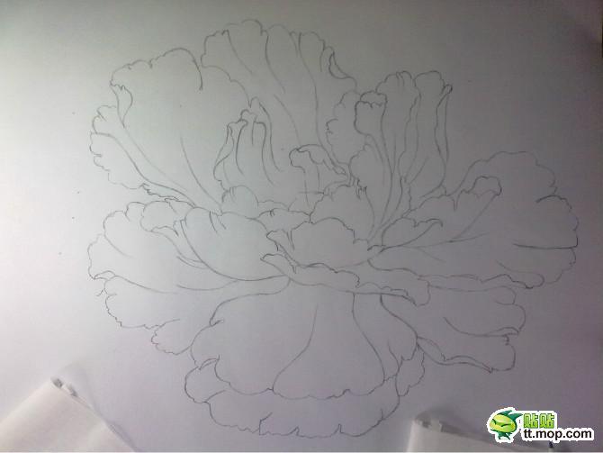 装修效果图铅笔画