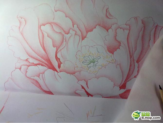 牡丹铅笔画