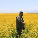老兵西藏之行的照片(2)